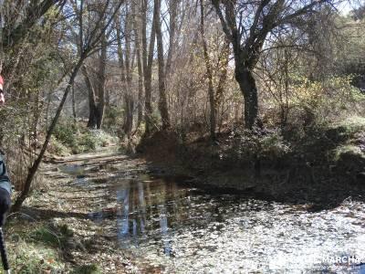 Parque Natural del Barranco Río Dulce;senderismo gredos senderismo la rioja